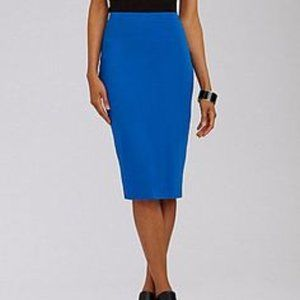 Lanvin Blue Fitted Straight Pencil Zip Skirt 12 10